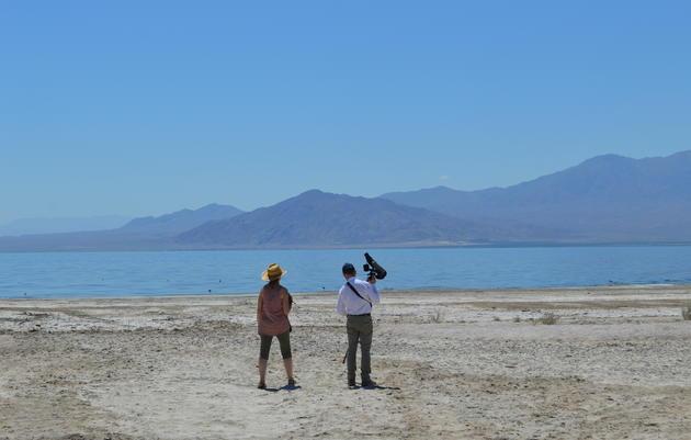 The Salton Sea Holds On For Dear Life