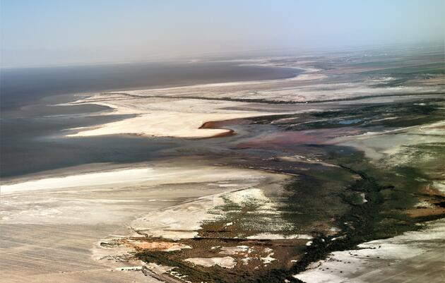 State Habitat Restoration Project Breaks Ground at Southern End of Salton Sea