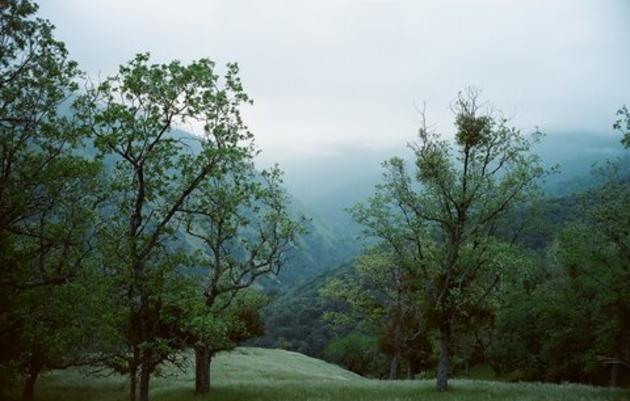 Tejon Ranch: Protecting a California treasure