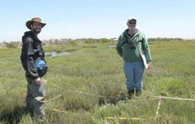 Lower Tubbs Island restoration