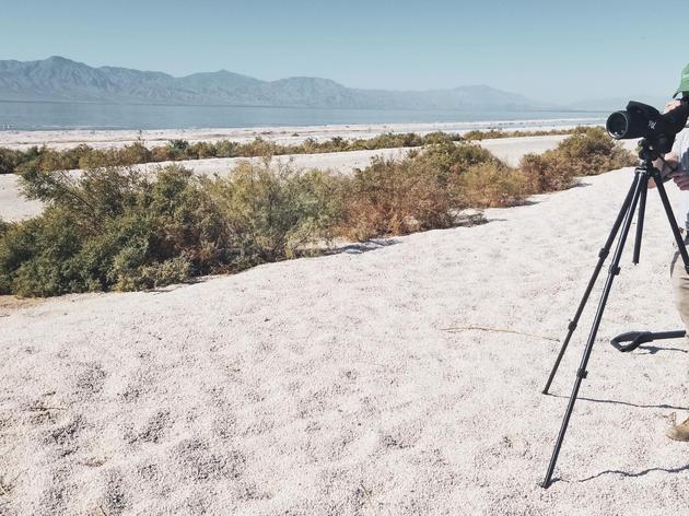 Salton Sea Information and Resources