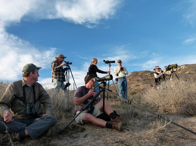 Did you participate in the 114th Christmas Bird Count Season?