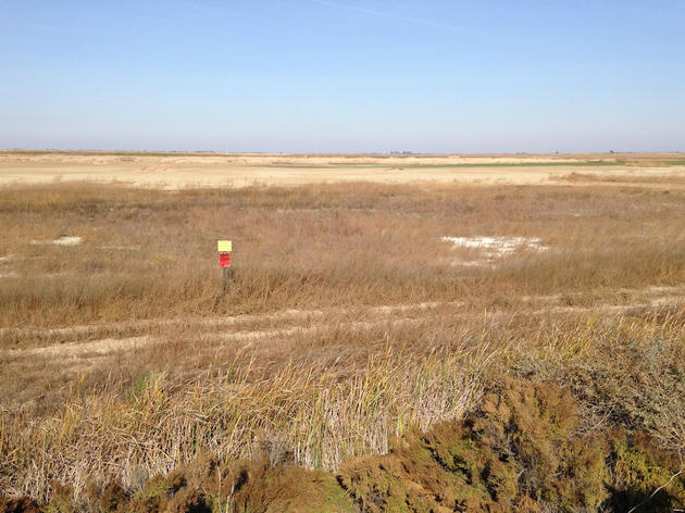Audubon keeps its eyes on the drought