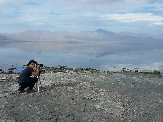 Checking in on the birds at the Salton Sea
