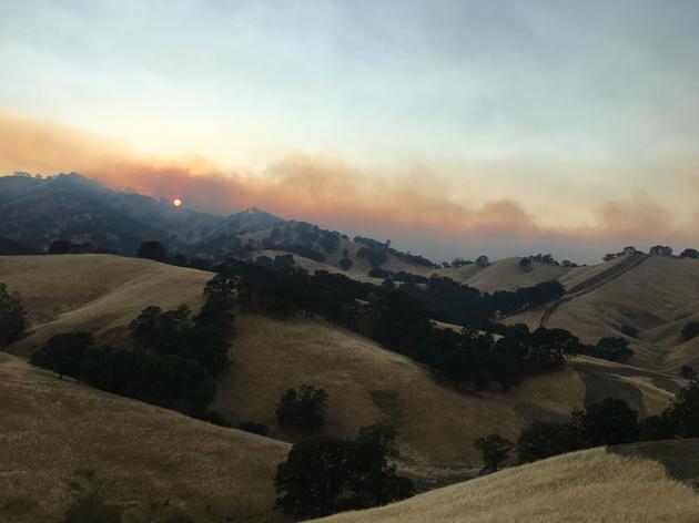 Wildfire at Bobcat Ranch