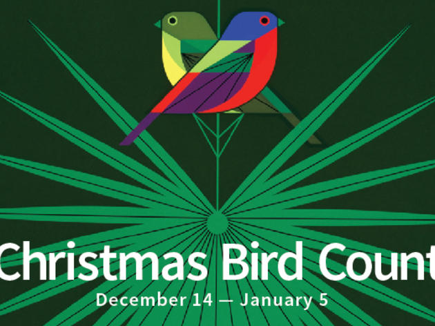 118th Christmas Bird Count is underway!