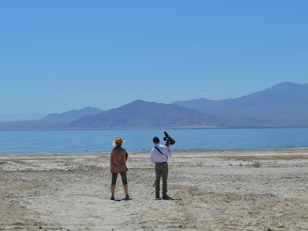 The Salton Sea Holds On For Dear Life