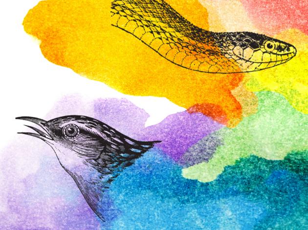 Queer Bird Story Hour
