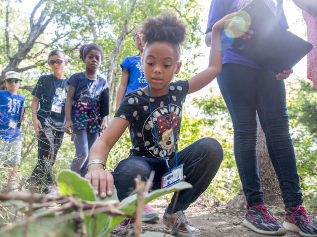 Three Decades after Prop 187, Immigrants Still Face Barriers to Public Green Spaces