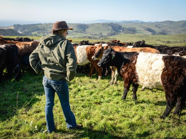 A Way Forward for California's Working Lands