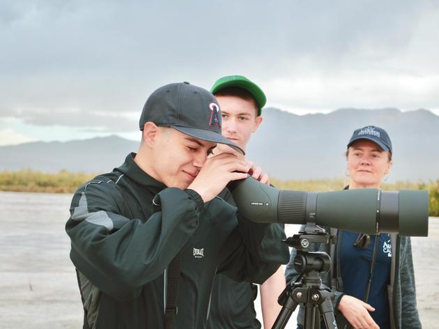 Eyes on the Salton Sea - 2019 Highlights