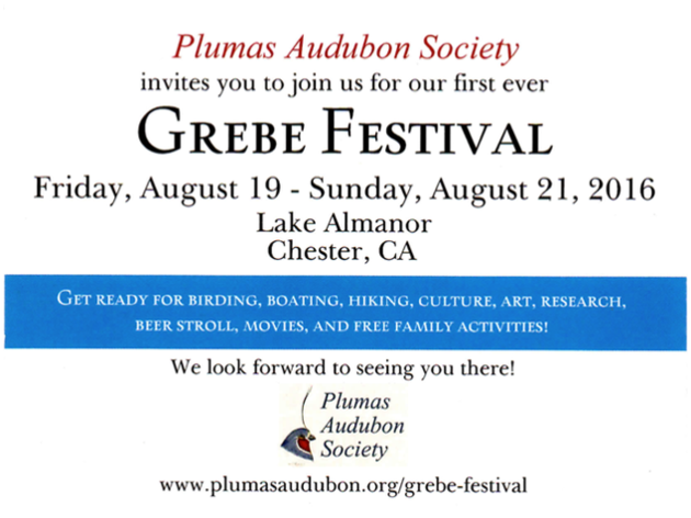 We are going to the first ever Grebe Festival in August. Are you?