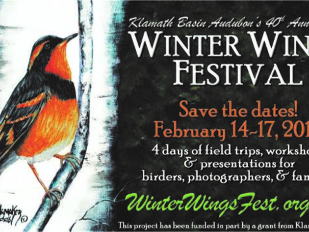 2019 Winter Wings Festival