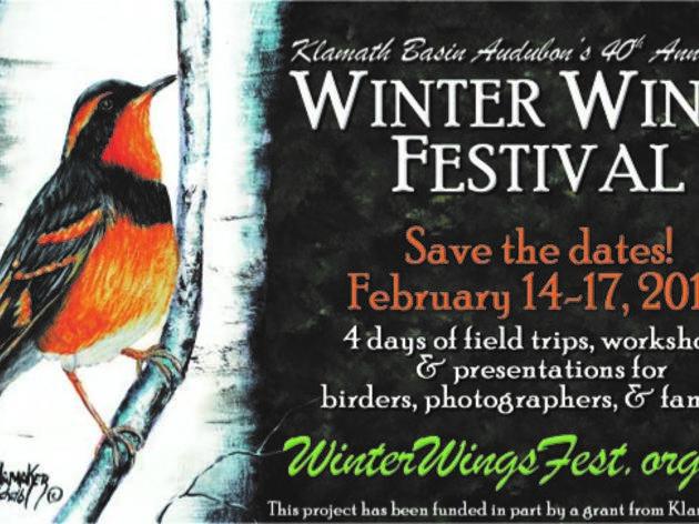 2019 Winter Wings Festival
