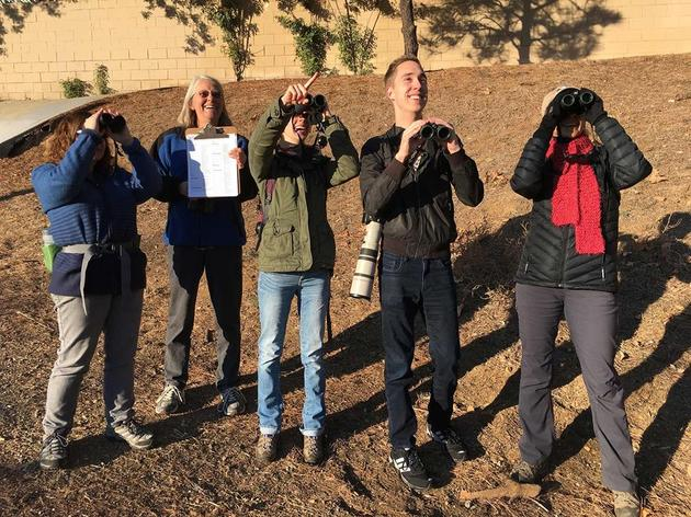 Highlights from the Christmas Bird Count 2015
