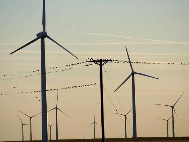 Ambitious Climate Change Bill Fails to Clear California Senate