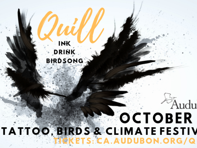 Quill Festival