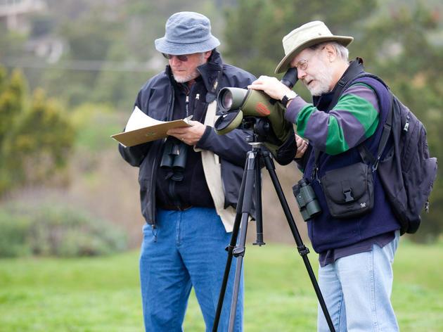 Volunteers make the (waterbird) world go round