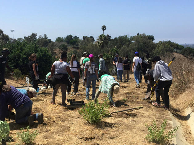 Los Angeles Audubon restoration program creates new opportunities for young people