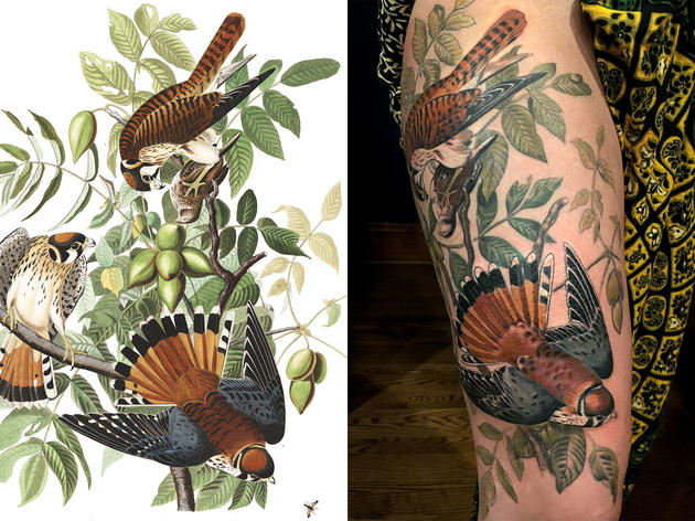 Perfect Tattoo Replicas of Audubon's Birds of America