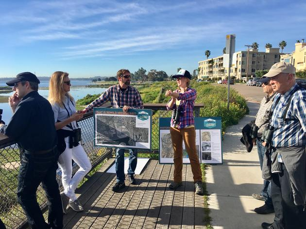 San Diego Audubon leads a tour of ReWild Mission Bay