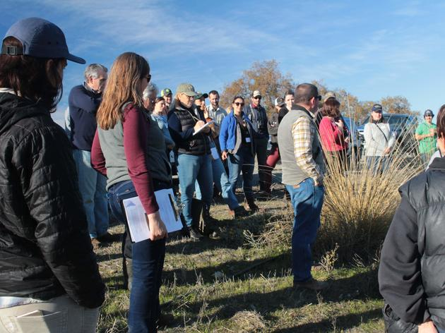 Farmers and landowners learn about creating habitat and improving soil health