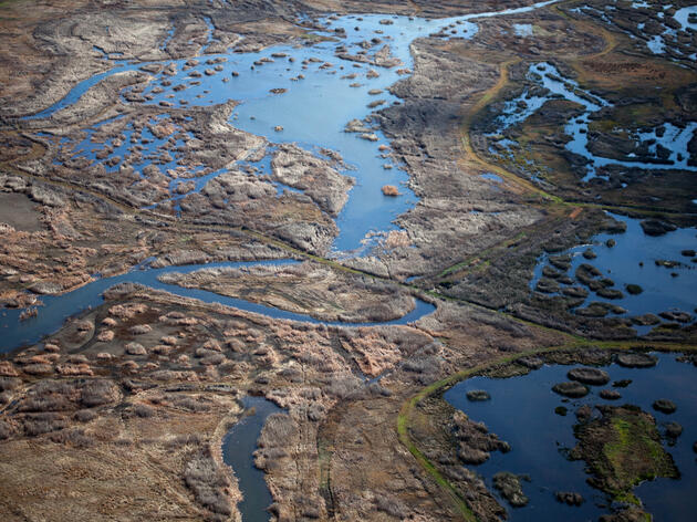 New Study: Wetlands Restoration Can Improve Water Quality in Central Valley