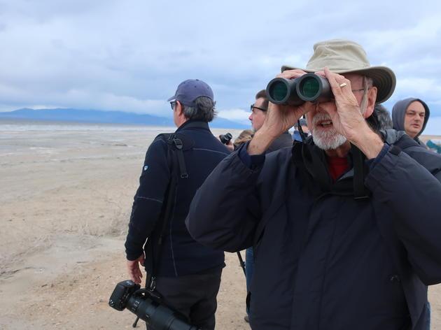Visiting the Salton Sea