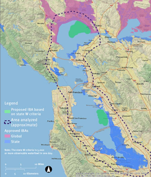 Highlighting importance of open water habitat for birds in San