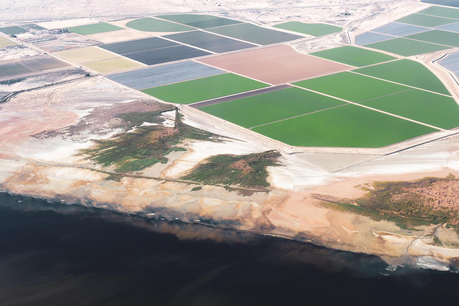 Humedales de la laguna Salton Sea