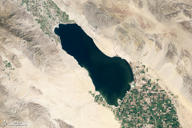 Stop Calling The Salton Sea An Accident Audubon California