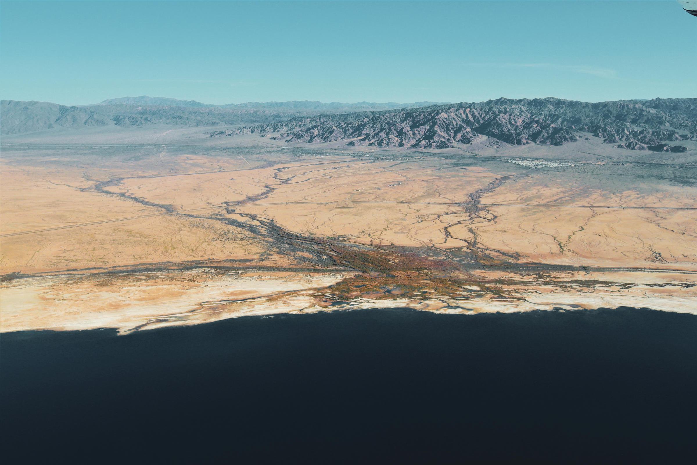 Wetlands at the Salton Sea