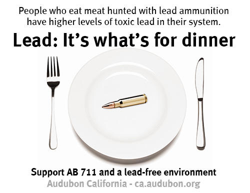lead it s what s for dinner audubon california